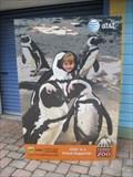 Image for Penguin Beach