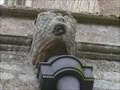 Image for Gargoyle - St Mary's Church, Woodnewton, Northamptonshire, UK