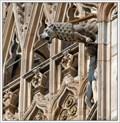 Image for Gargoyles of the Duomo di Milano (Milan Cathedral), Milan, Italy