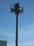 Image for Tropicana Cell Palm - Las Vegas, NV