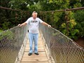Image for Lucy Park Swinging Bridge