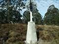 Image for Omeo trig, Mernot/Niangala, NSW