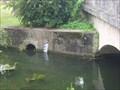 Image for Echelle d'eau sur la Geres. St Germain de Marencennes. France