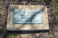 Image for Trenton Centennial Time Capsule - Trenton, Missouri