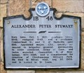 Image for Alexander Peter Stewart