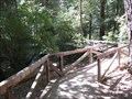 Image for Elevated Bridge - Boulder Creek, CA