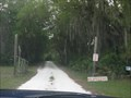 Image for 13 mph - McGregor Smith Scout Reservation