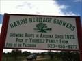 Image for Blackberry Picking at Harris Heritage Growers, Sonoita, AZ