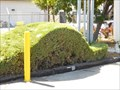 Image for Vroom, vroom -- Rancho Cordova CA