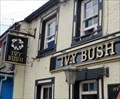 Image for The Ivy Bush - Newcastle Emlyn, Carmarthenshire, Wales.