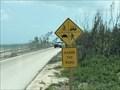 Image for Quad Crossing - Bahia Honda Key, Florida, USA