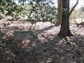 Image for Venable Family Cemetery - Arcade, GA