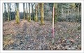 Image for TB 2302-15 Horecký les, CZ