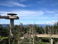 Image for Clingmans Dome Observation Tower - Great Smokey Mountains National Park