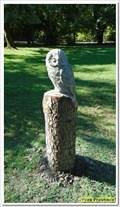 Image for Owl - Saint Martin de Crau, Paca, France