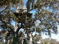 Image for Uma casa na árvore no Alentejo - Évora