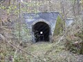 Image for Winston Tunnel 1888-1972