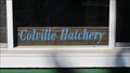 Image for Colville Hatchery - Colville, WA