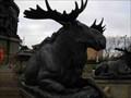 Image for Moose @ the George Washington Monument - Philadelphia, PA
