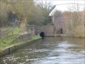 Image for South east portal - Gosty Hill tunnel - Dudley No. 2 canal - Halesowen, Birmingham