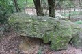 Image for Mississippi Petrified Forest -- nr Flora MS