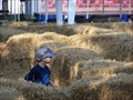 Image for Hay Bale Maze - Crossroads Village - Flint, MI