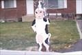 Image for Cow in Spanish Fork, UT