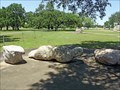 Image for Crawling Venus - Liberty Hill, TX