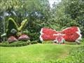 Image for Busch's Butterflies