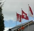 Image for Municipal Flag - Hofstetten-Flüh, SO, Switzerland