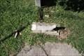"Image for ""Tweet"" A Mockingbird -- Oakland Cemetery, Atlanta GA"