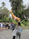 Image for Elephant and Giraffe - Six Flags - Vallejo, CA