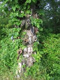 Image for Erie Shoe Tree - West of Port Colborne, Ontario