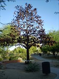 Image for Las Brisas: Tree Ramada - Chandler Arizona