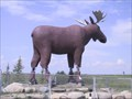 Image for LARGEST - Moose Statue in the World - Moose Jaw, Saskatachewan
