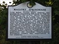 Image for Mallory Springhouse - Williamson County Historical Society
