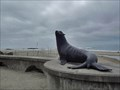 Image for Lincoln City, Oregon: Statue of Joe the Sea Lion