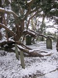 Image for Churchyard, Church of St Erfyl , Llanerfyl, Powys, Wales, UK