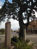 Image for Historic Oak / Muster Oak - La Grange, TX