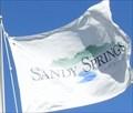 Image for Sandy Springs Georgia