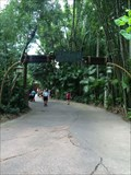 Image for Rainforest Cafe Arch - Lake Buena Vista, FL