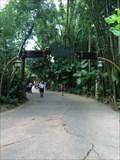 Image for Rainforest Cafe Arch - Lake Buena Vista, FL