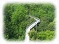 Image for National Park Hainich - Treetop Path - A Wildlife Refuge, Bad Langensalza, TH