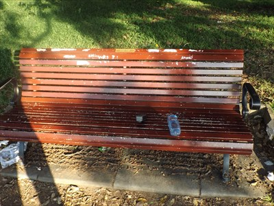 A view of the bench, with the peeling paint.