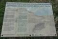 Image for Endangered Predator in Dunes - Talacre, UK