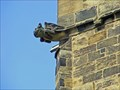 Image for All Saints Church Gargoyles - Yorkshire, United Kingdom