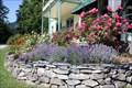 Image for Centennial Rose Garden - New Denver, British Columbia