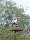 Image for Les oiseaux du Pal, Dompierre sur Bresbre, Allier, France