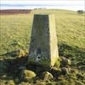 Image for O.S. Triangulation Pillar - Kincaldrum Hill, Angus.