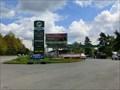 Image for E85 Fuel Pump PRIM - Tehovec, Czech Republic